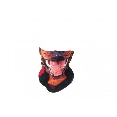 Kaklaskarė (Daugiafunkcinis galvos apdangalas)